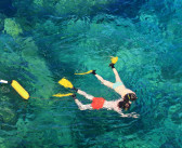 Snorkeling guidato a  Bergeggi: i magnifici fondali dell'Area Marina Protetta.