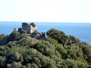 Torre_Isola-S_Bava-800